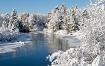 Winter's Arti...