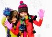 Cheerful Winter G...