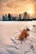 Setting Winter su...