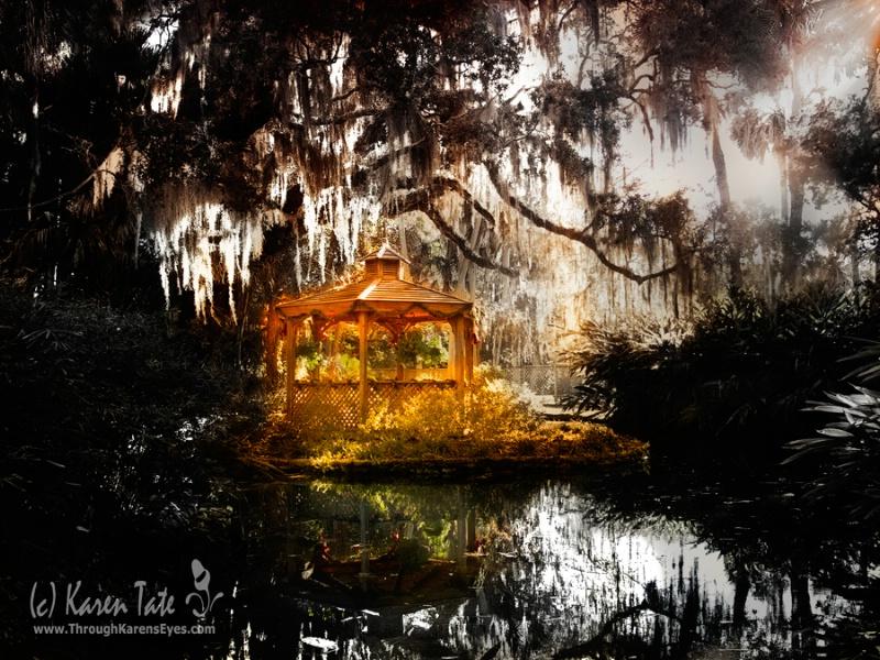 Washington Oaks Gardens, St. Augustine, Fl. - ID: 11349446 © Karen Rosenblum