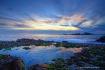 Point Lobos Suns...