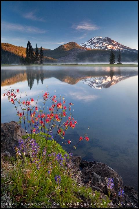 Cascades and Columbine