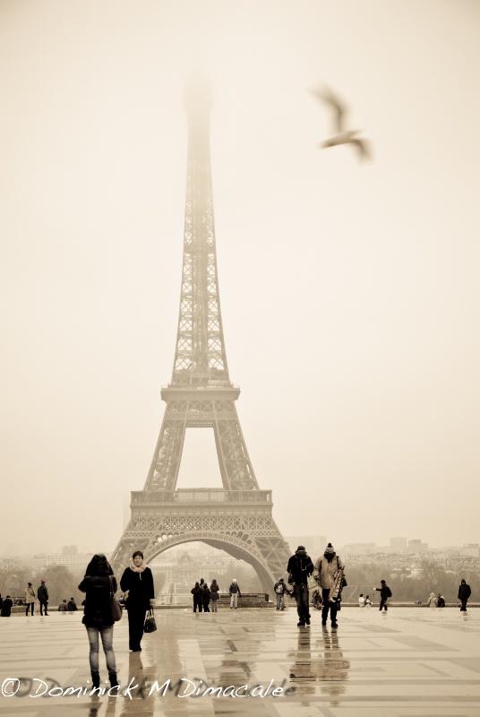 ~ ~ PARISIAN MEMORIES ~ ~