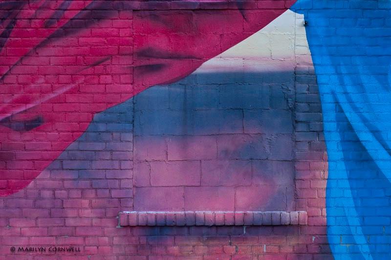 Blowing in the Wind - ID: 11426557 © Marilyn Cornwell