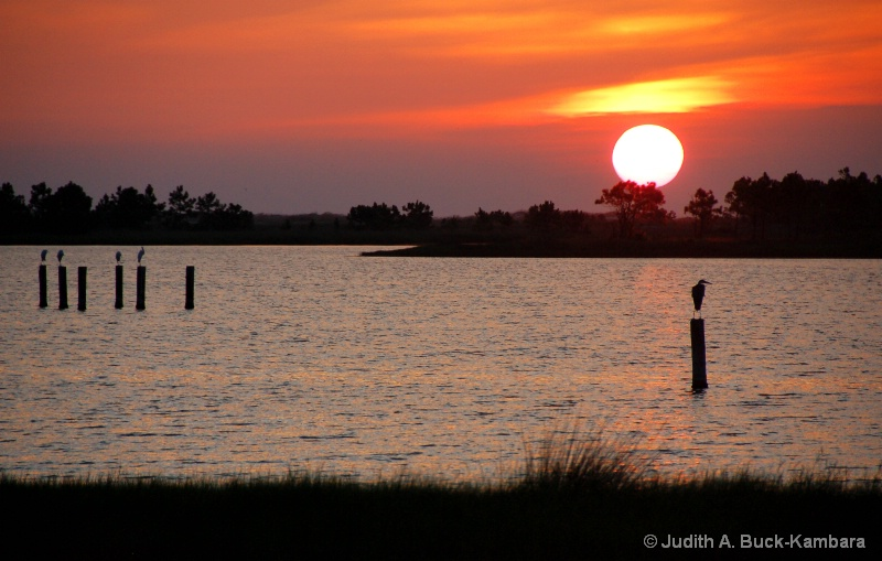 lagoon sunset - ID: 11437622 © Judith A. Kambara