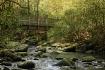 Mountain Stream S...