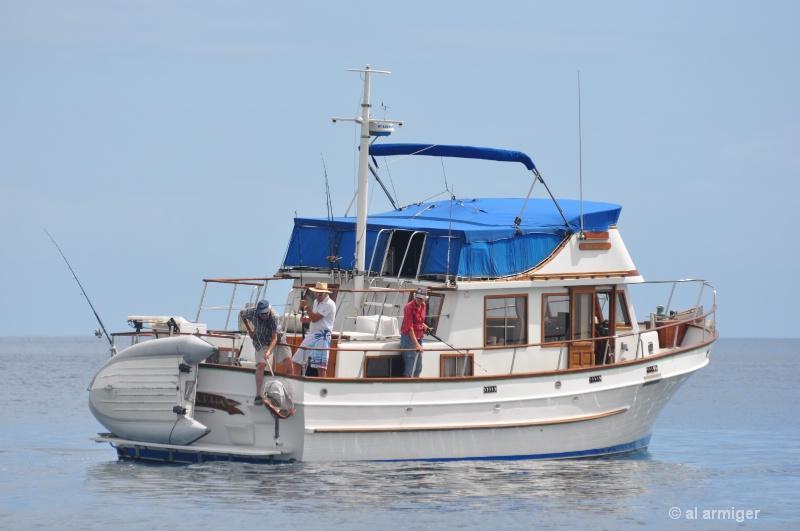 Fishing on the Matatua dsc 0424 - ID: 11446457 © al armiger