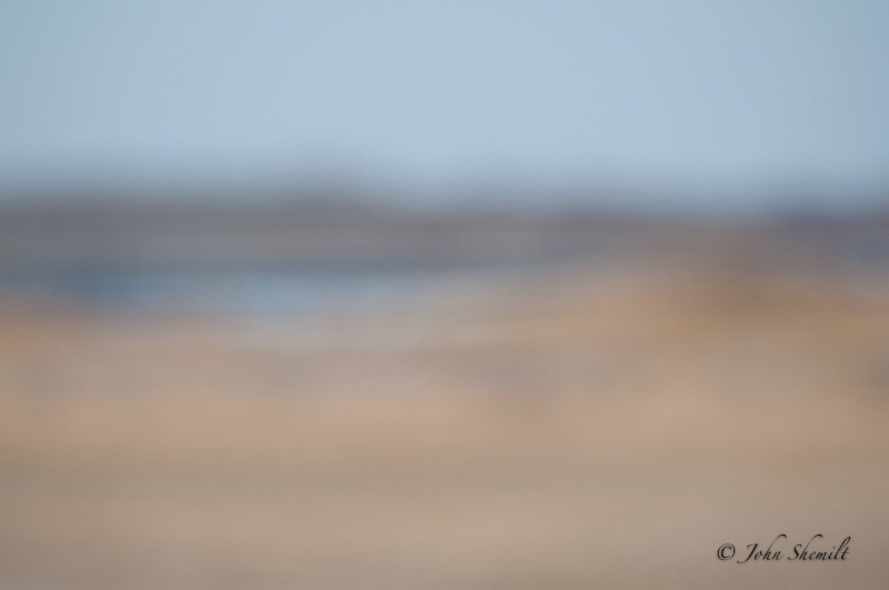 looking over the marsh - ID: 11448469 © John Shemilt