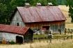 Rural Beauty 2