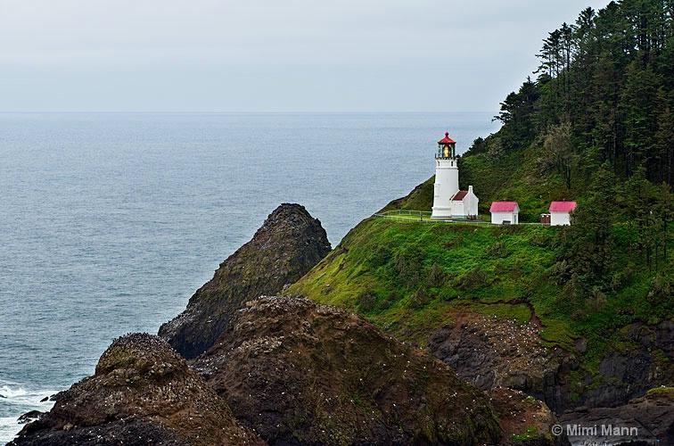 heceta-head-lighthouse-788-060 - ID: 11483130 © Marilynn Mann