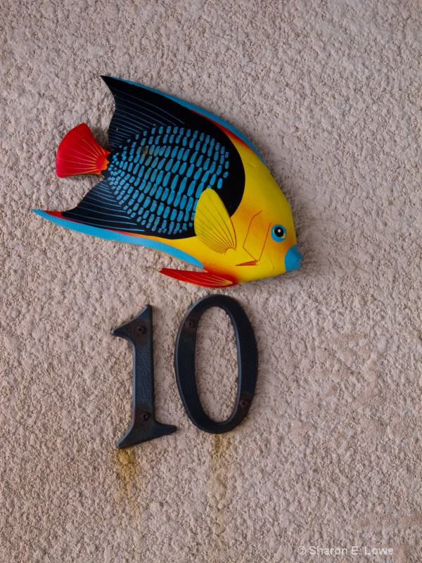 Number 10, Xanadu Resort, Ambergris Caye - ID: 11518170 © Sharon E. Lowe