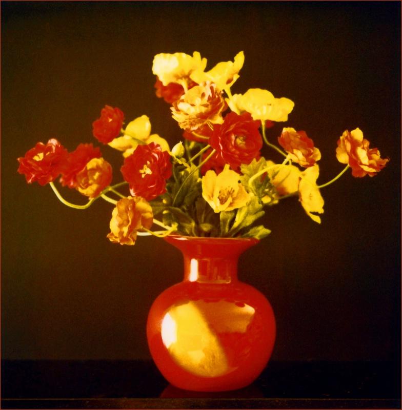 Red Vase - ID: 11543740 © STEVEN B. GRUEBER