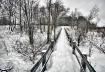 Winter Boardwalk ...
