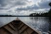 Amazon Rainforest...