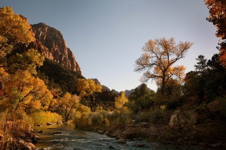 Zion in its Glory
