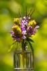 Sunny wildflowers