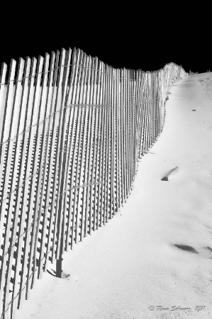 Dune Fence-Infrared