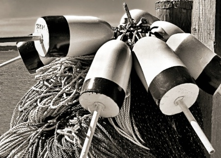 Lobster Trap Buoys in BW