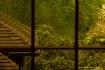 window distortion...