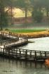 Serpentine Bridge...