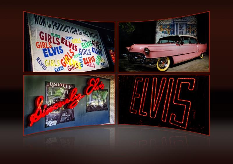 Elvis, Elvis, Elvis! - ID: 11800528 © JudyAnn Rector