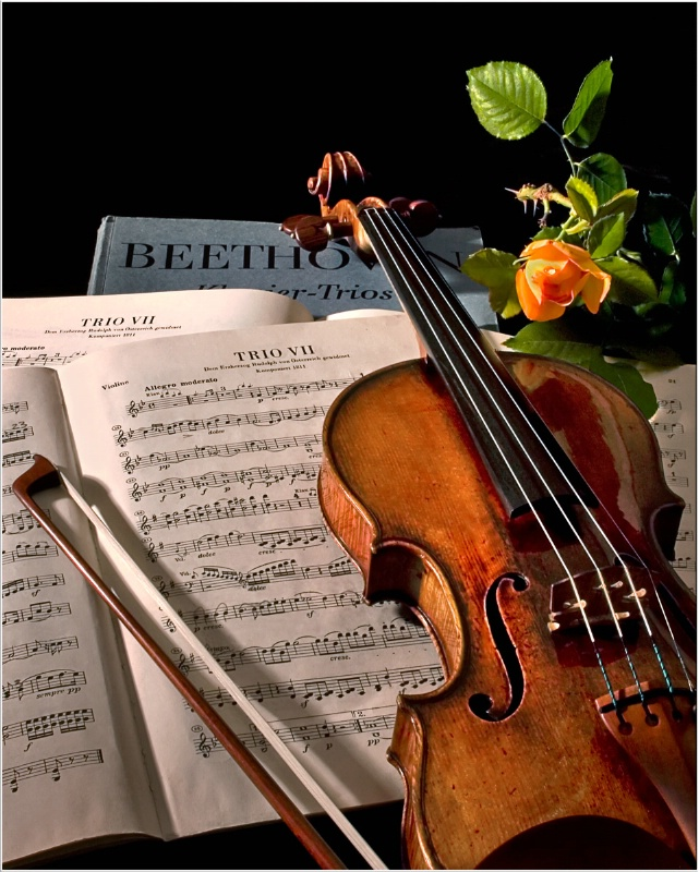 Music - The Universal Language - ID: 11810699 © Endre Balogh