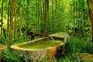 japanese-tub