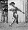 The Baseball Stan...
