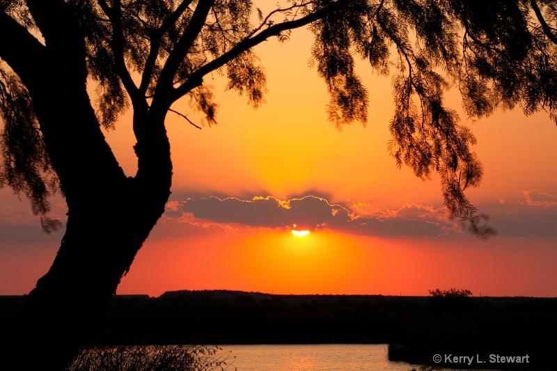 Sunset Silhouette - ID: 11902548 © Kerry L. Stewart