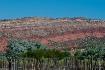 New Mexico image