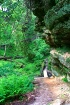 Falls Trail II