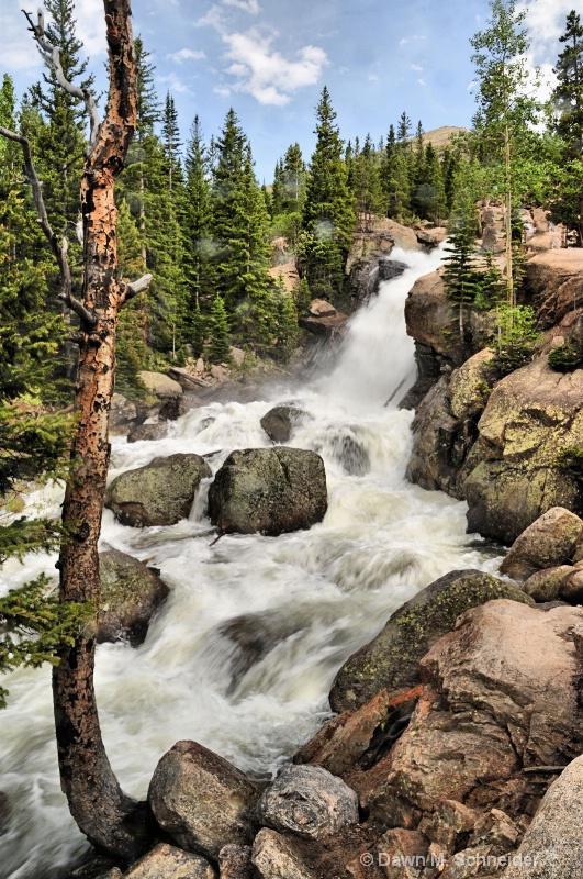 Alberta Falls 2