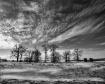 Winter wind on th...
