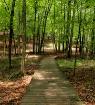 My Hike
