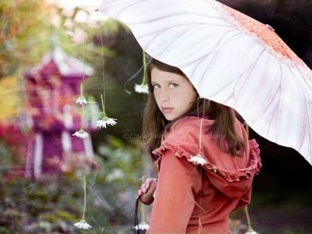 Raining daisies3