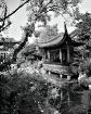 Chinese Garden, P...