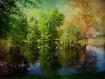 Summers Reflectio...