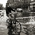 2biking in NYC - ID: 12157647 © Stefania Barbier