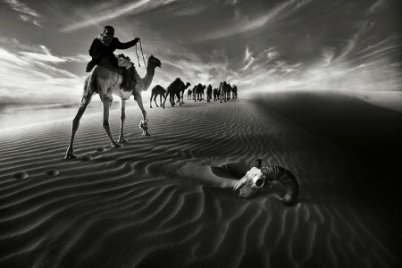 Photography Contest Grand Prize Winner - August 2011: Convoy