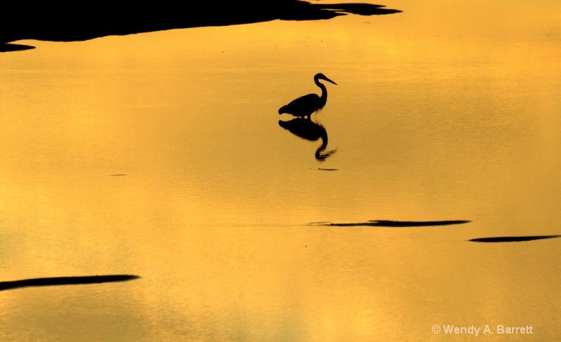 Sunrise at Goosefare Brook - ID: 12220635 © Wendy A. Barrett