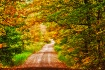 A tunnel of fall ...