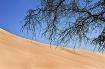 Dune - 3 -