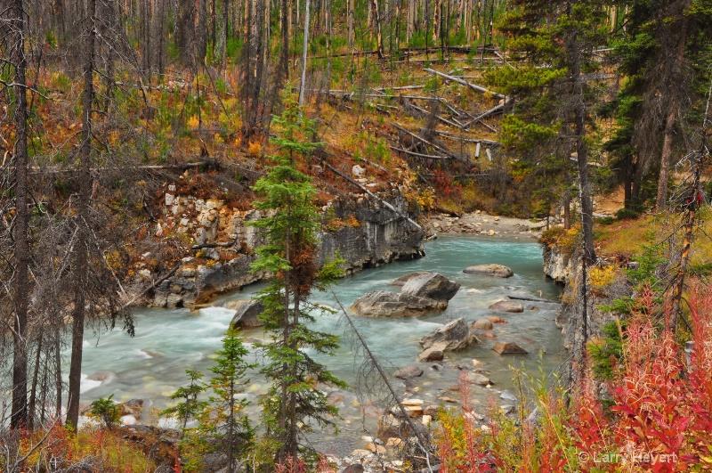 Marble Canyon in Kootenay National Park - ID: 12303370 © Larry Heyert