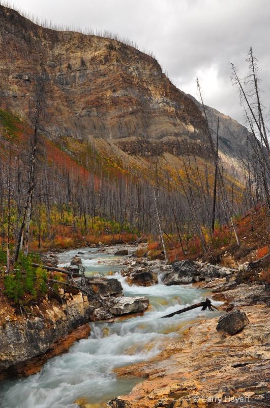 Marble Canyon in Kootenay National Park - ID: 12303375 © Larry Heyert