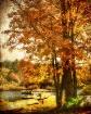 Warm Autumn Memor...