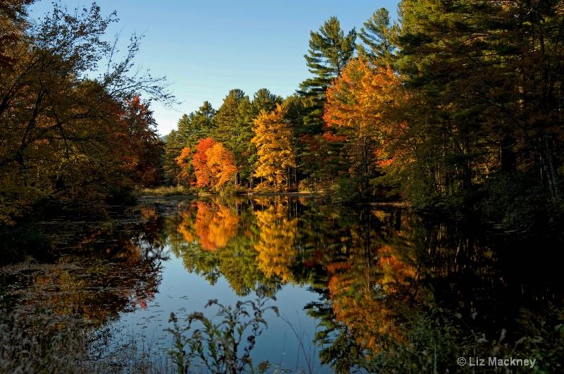 New England's Autumn Reflection