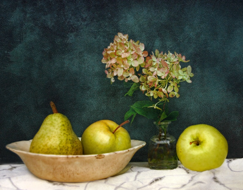 Apples, Pear and Hydrangea