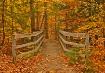 Across This Bridg...