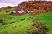 Reading Vermont ~...