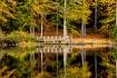 Bowie's Pond,...